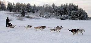Детский лагерь в Карелии. Зима