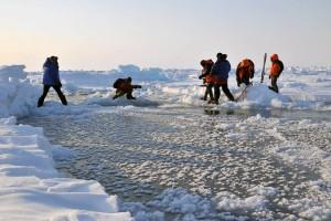 Приходится прыгать со льдины на льдину