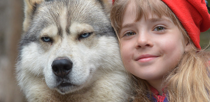 Красная Шапочка и Серый (волк).