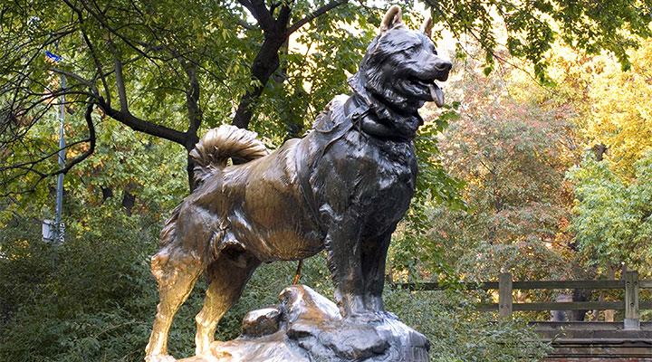 Памятник хаски Балто в Центральном парке Нью-Йорка.