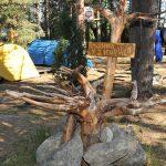 Детский лагерь «Большое Приключение» расположен в чистом лесу на берегу живописного озера.