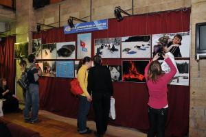 В холле Дома кино разместилась фотовыставка «Территория равных»