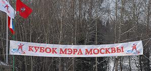 Открытые соревнования на Кубок Мэра Москвы