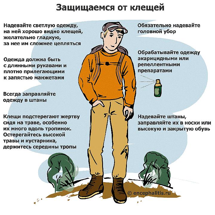 Рекомендации сайта encephalitis.ru