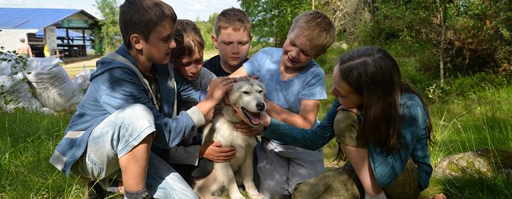 «Я хочу точно такую же собаку. Она будет моим самым лучшим другом»