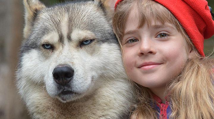 Красная шапочка и Серый (фото Анны Золотиной)