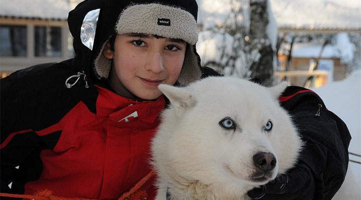Хаски-парк в Сокольниках – место, где живут собаки-обнимаки